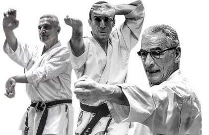 Stage Karate Milano 2021