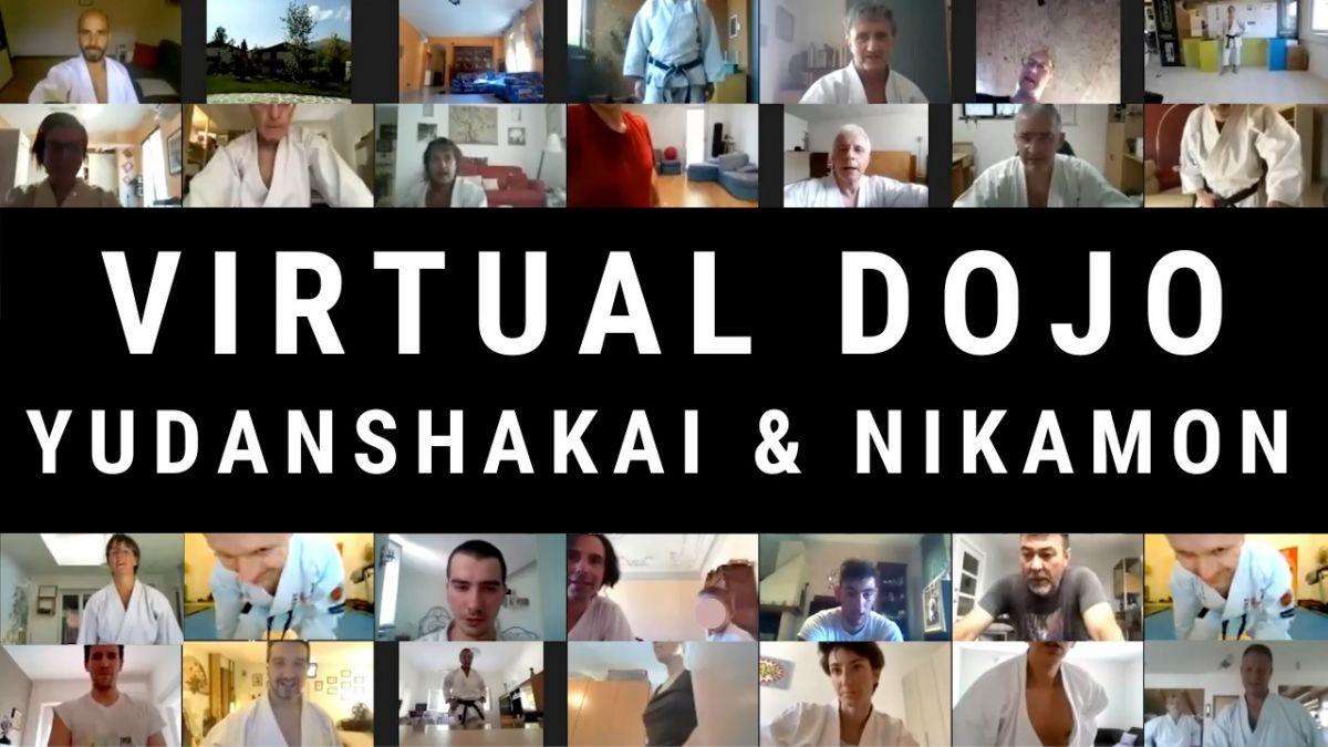 Video Virtual Dojo Karate Do